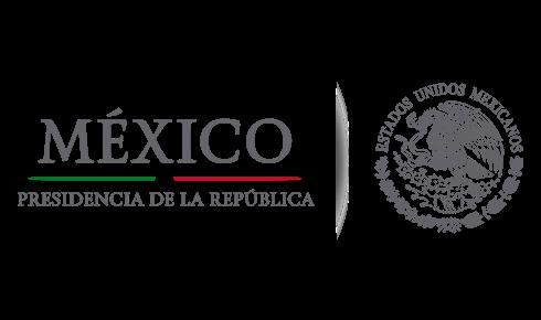 diseño paginas web mexico en Tonatico