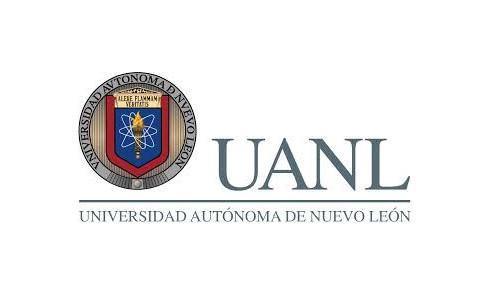 paginas web para moviles en Morelos
